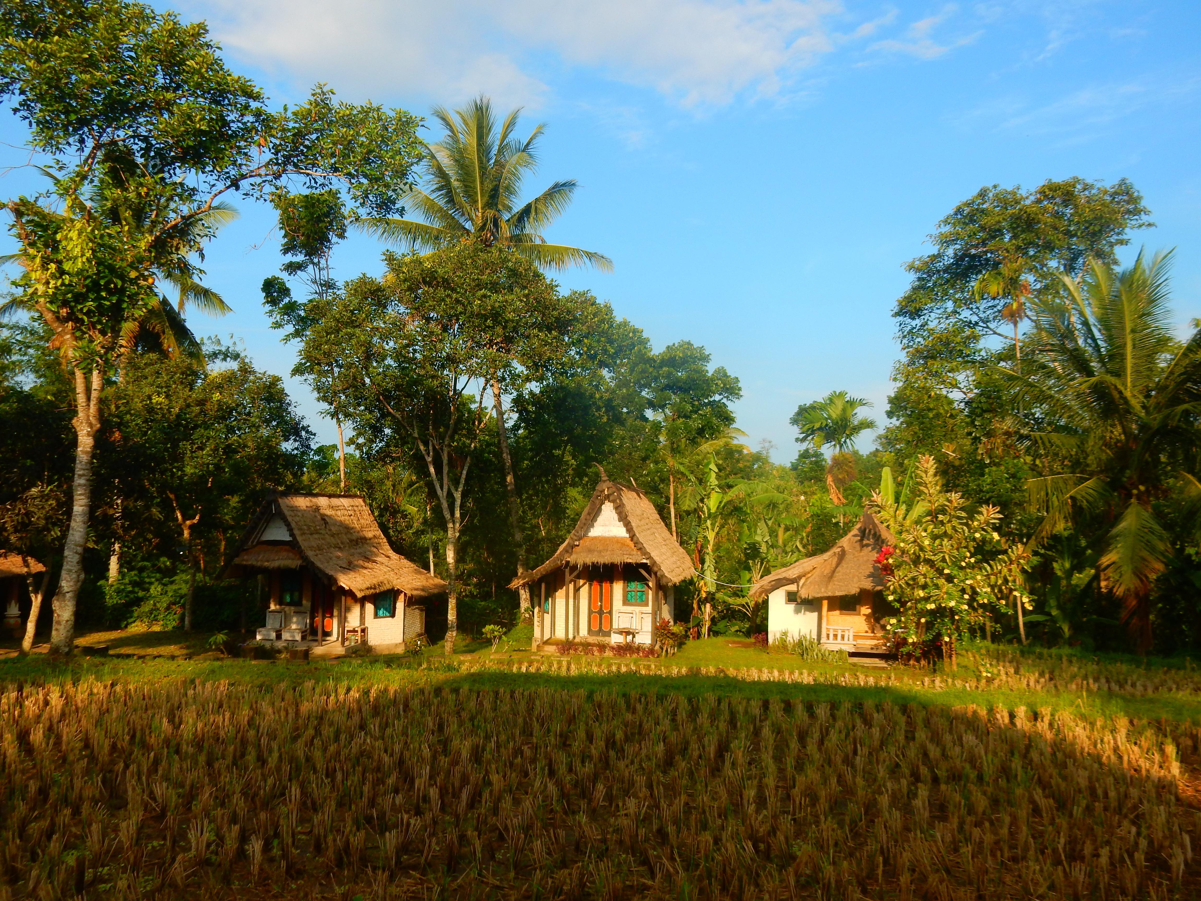 Bungalows Hakiki In, Tetebatu Lombok, Indonésie