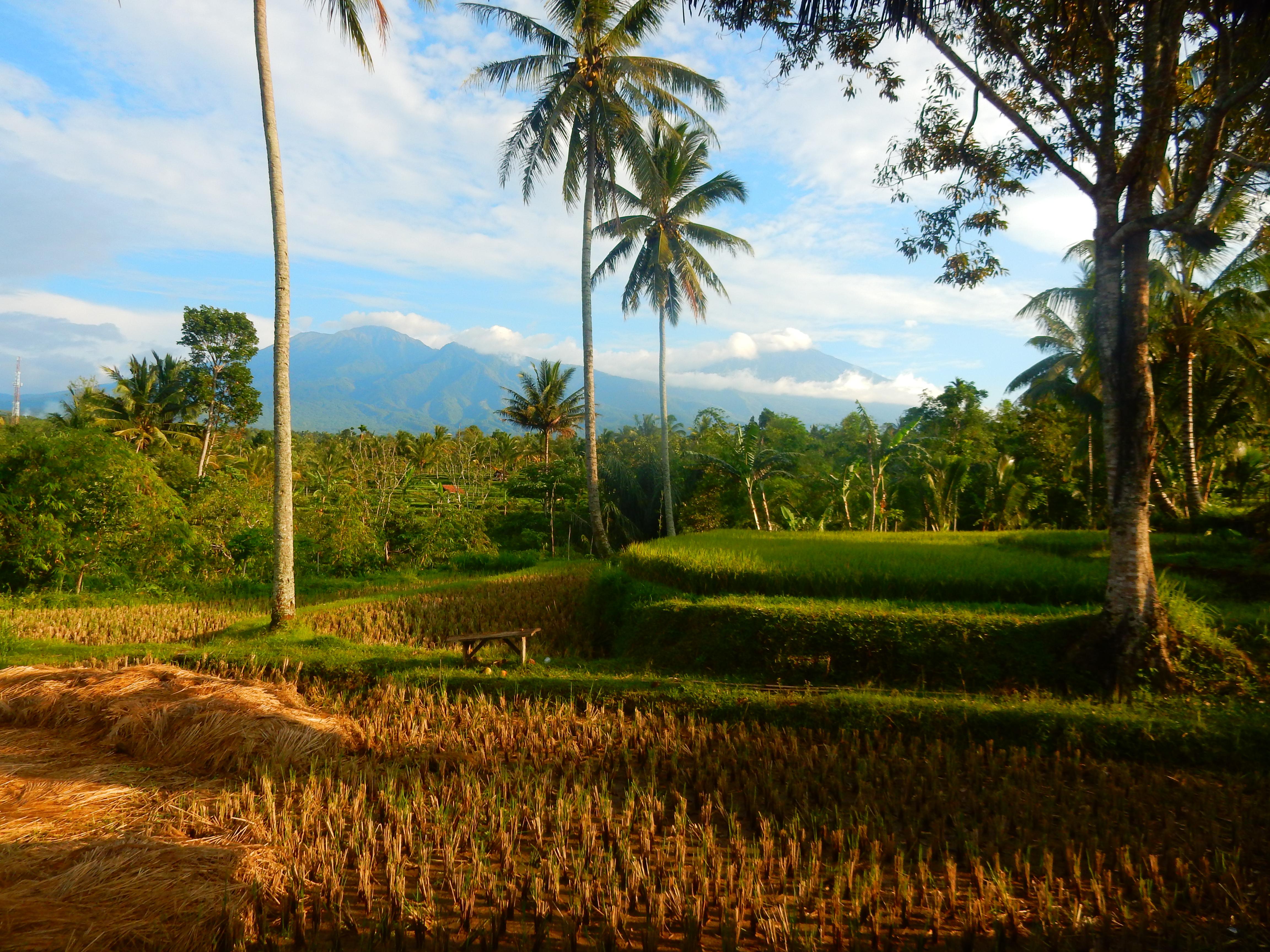 Hakiki In, Tetebatu Lombok, Indonésie