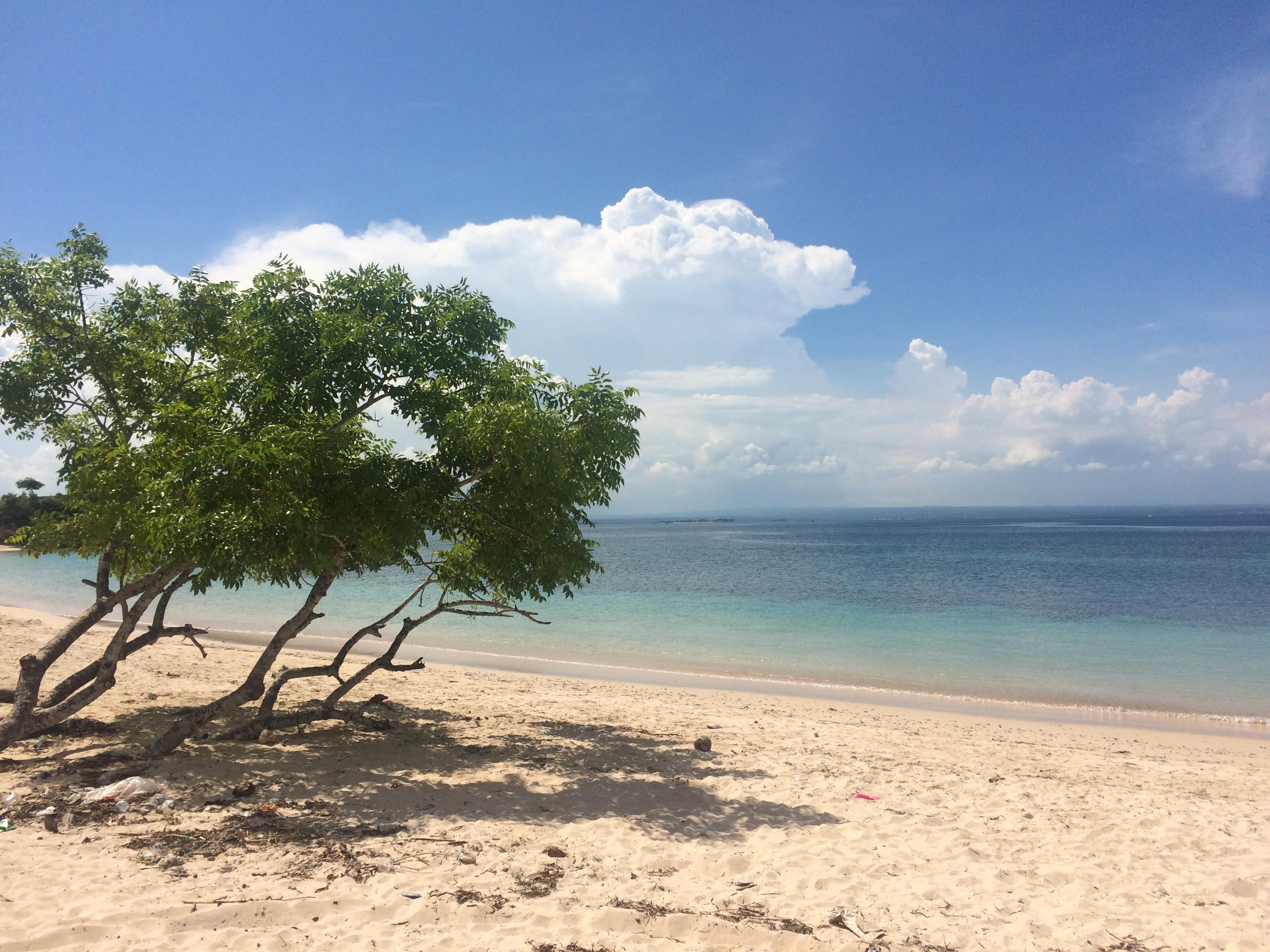 Plage de sable rose, Pink Beach, Lombok, Indonésie.