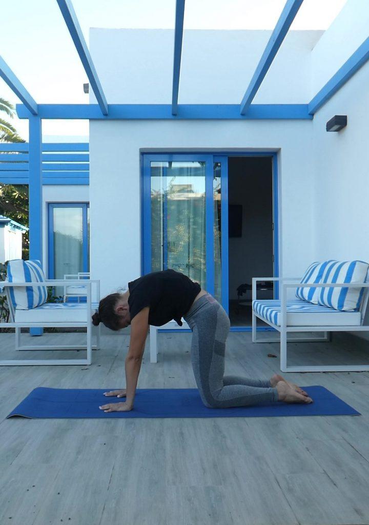 Posture chat dos rond, Marjaryasana, yoga
