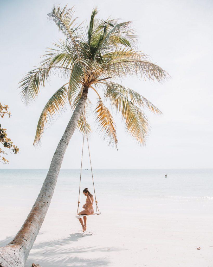 Palmier sur plage de sable blanc