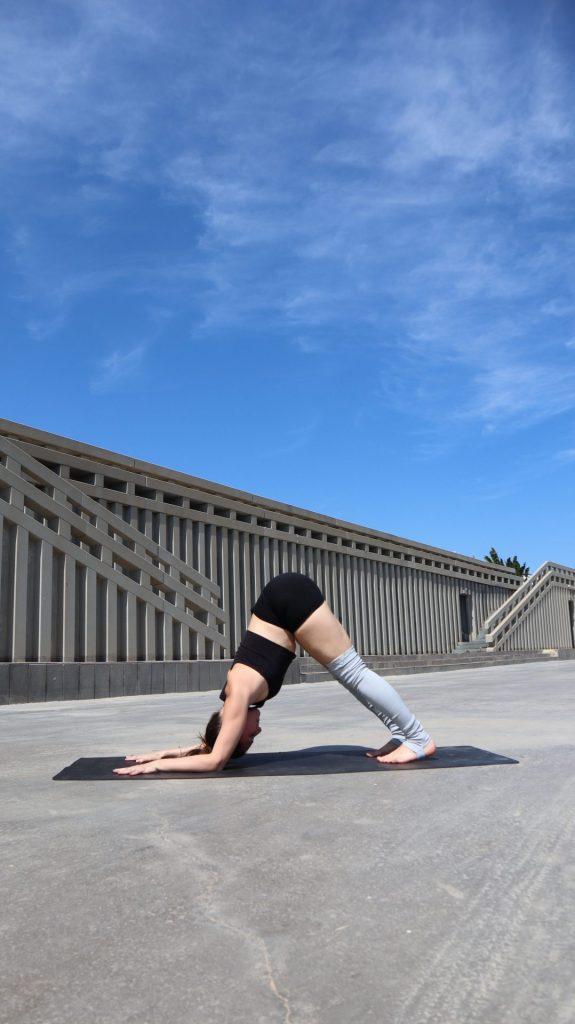 La posture du dauphin yoga
